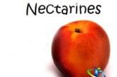 میوه شلیل چه خاصیتی دارد؟+فرق شلیل و شفتالو