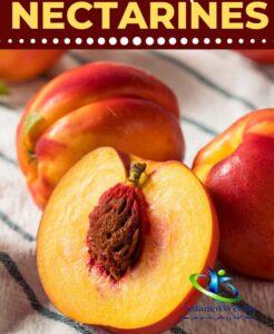 شلیل میوه چه فصلی است؟