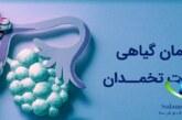درمان سریع کیست تخمدان با داروهای گیاهی شفابخش