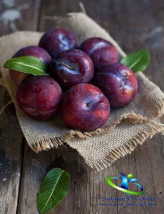 طبع میوه آلو